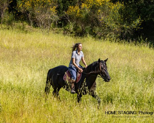 Horse Riding Holidays near Siena, in Tuscany, Italy