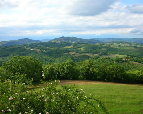 Where we are - Farm - Fattoria Tègoni
